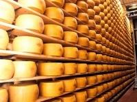 Export: va forte il Made in Italy nel 2011