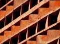 varie: La mattonella e' insetticida, il segreto e' nelle diatomee -   E' una sperimentazione in corso realizzata dalla Cottovietri con la II Universita' di Napoli